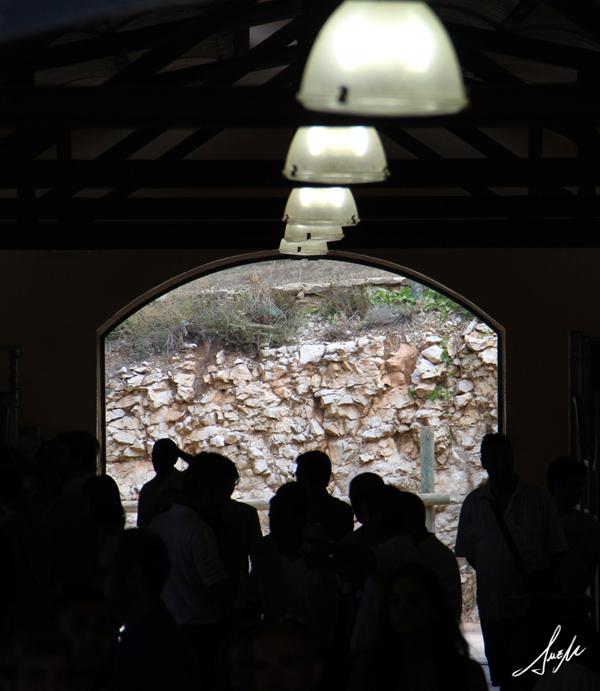 Visitantes en el Pasillo de cuadras