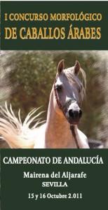 Campeonato de Andalucía de caballos árabes