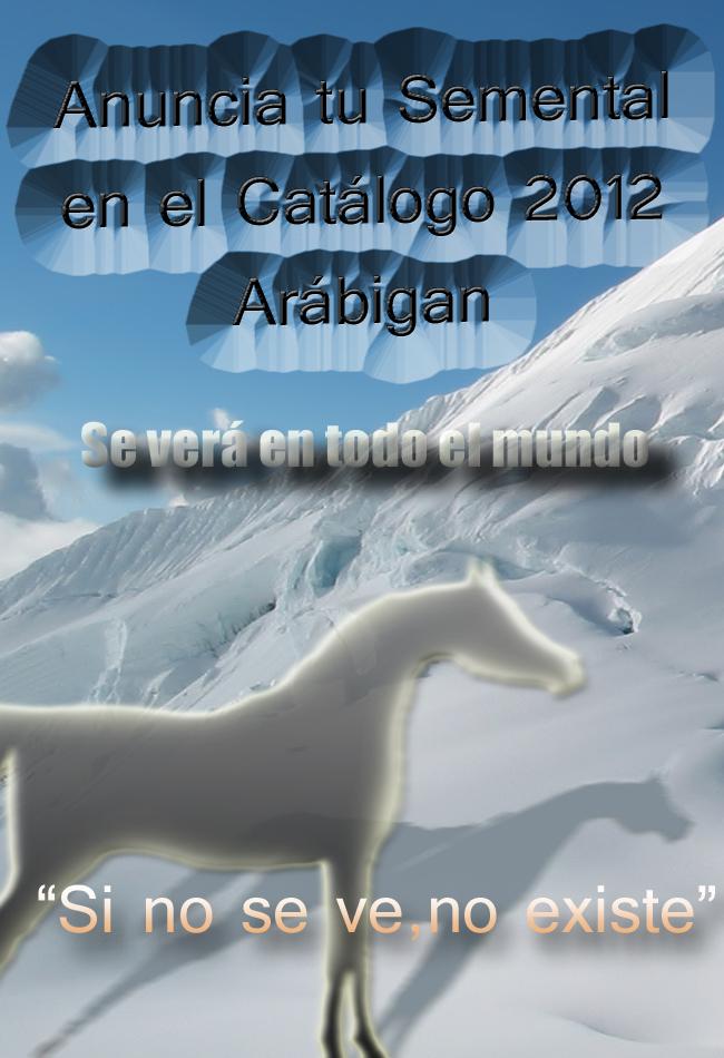Anuncio de Catálogo Sementales de caballo pura raza árabe