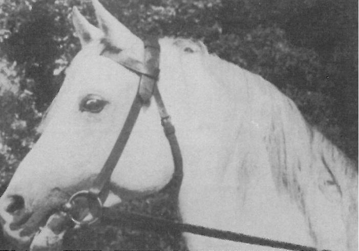 Amurath Sahib. Foto del archivo Foto archivo del Sr Pankiewicz