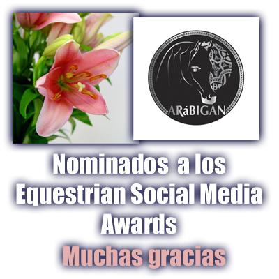 Nominaciones a los ESMA 2013