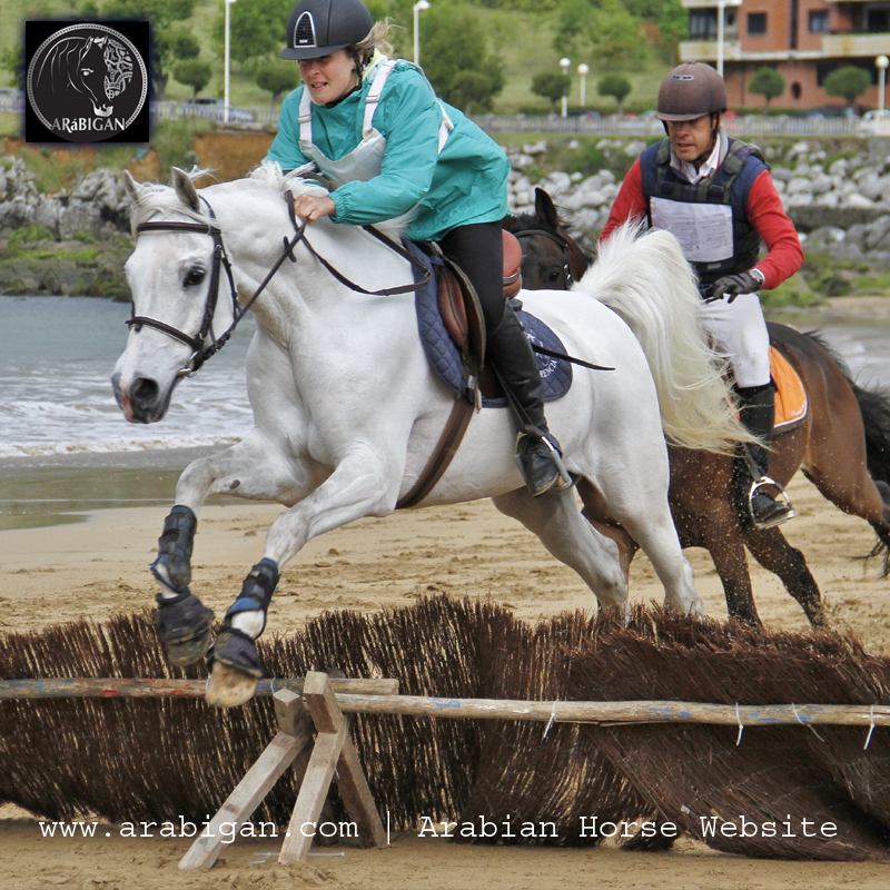 Carreras a caballo en la Playa de Brazomar