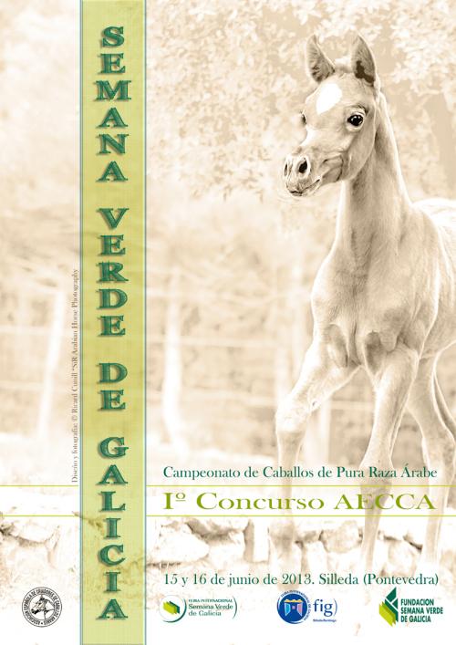 poster Show de caballos árabes de Silleda