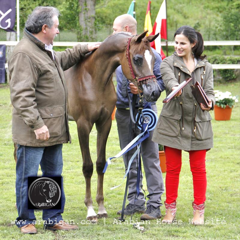 Saskia BV recibe el premio a la potra con mayor puntuación