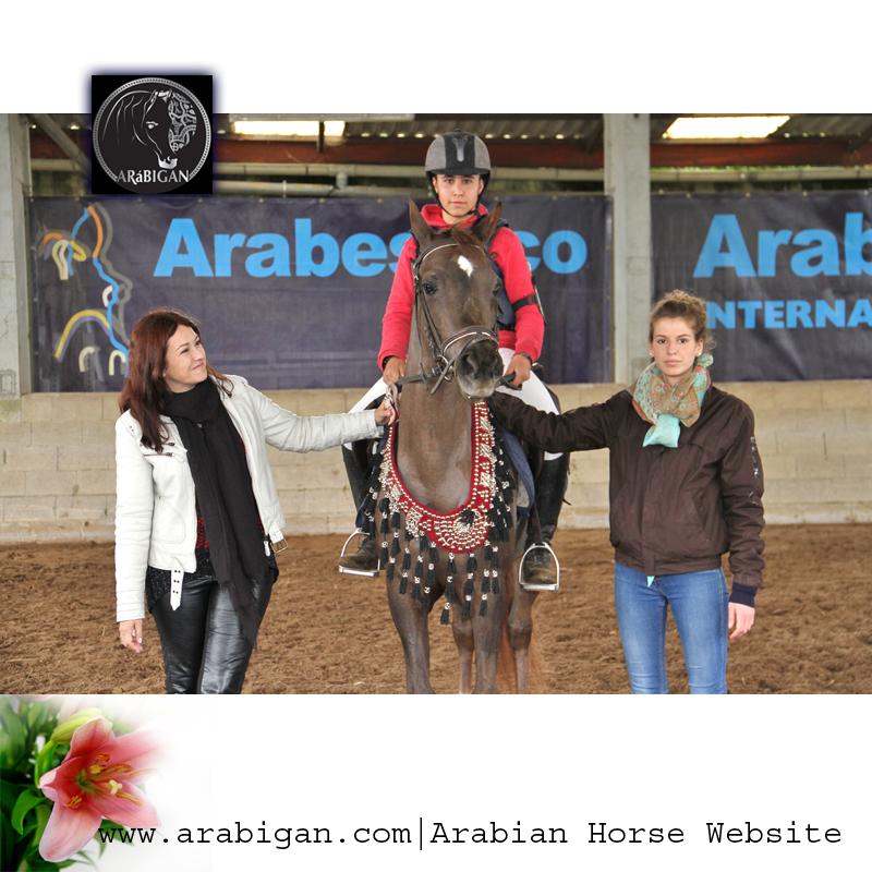 Trofeo CALPE a la Mejor Hembra Pure Spanish. Pikara