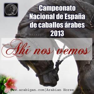 Campeonato Nacional de España 2013 Arabigan