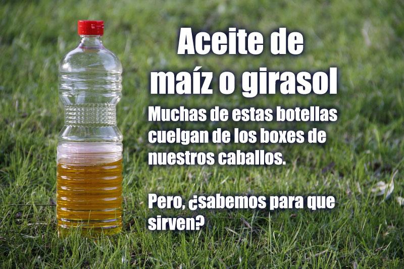 Aceite de maiz o girasol en la nutrición equina copia