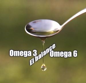 balance omega 3 6 en alimentación del caballo