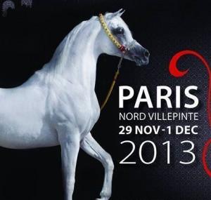 campeonato del mundo de caballos árabes . Paris