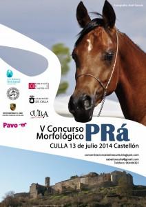 Show de caballos árabes en Culla