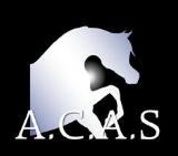 show caballos árabes de vichy