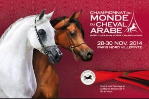 Campeonato del Mundo del Caballo árabe