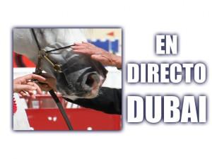 DUBAI EN DIRECTO ARÁBIGAN