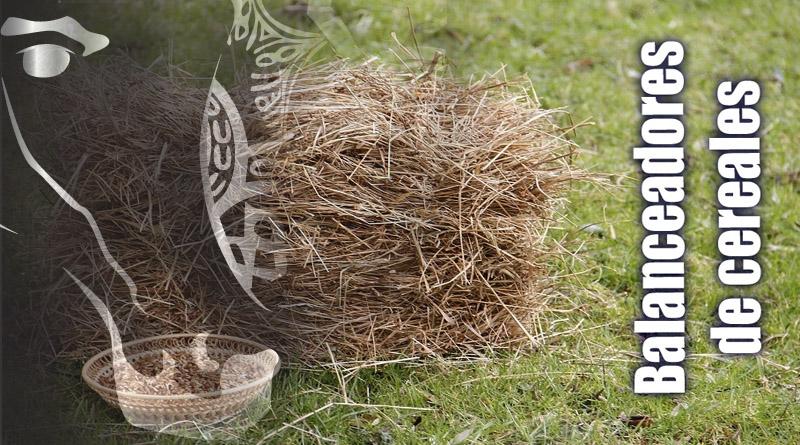 balanceadores de cereales en caballos