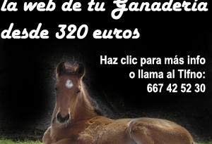 web para ganaderías de caballos