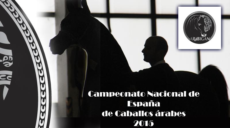 arábigan campeonato españa de caballos arabes