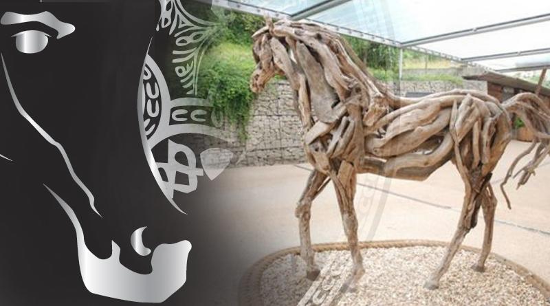 abiotrofia cerebelar en el caballo arabe