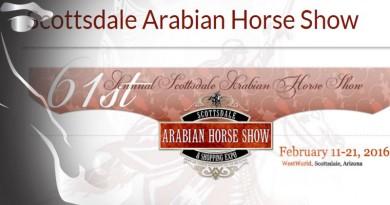 scottsdale caballos arabes