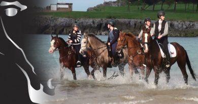 caballos arabes en el mar