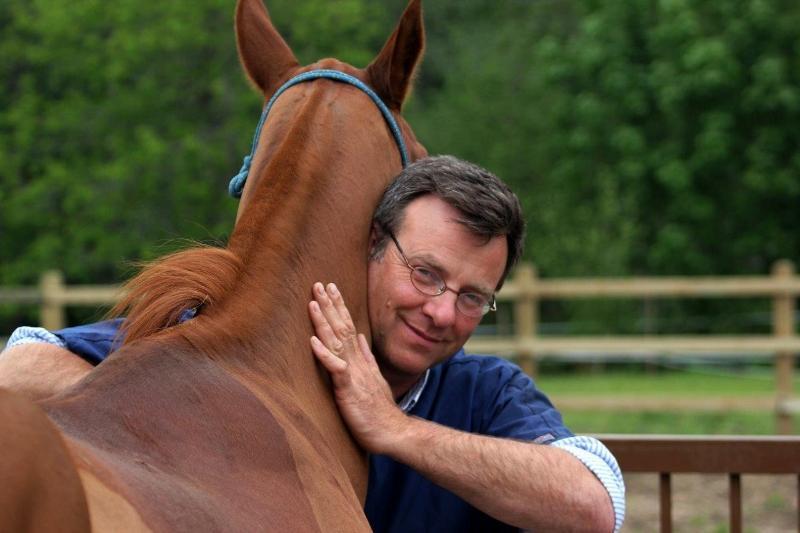 quiropraxia en caballos