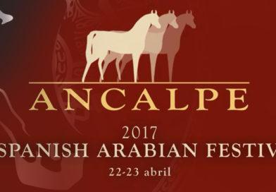 Festival ANCALPE de caballos árabes Pure Spanish 2017