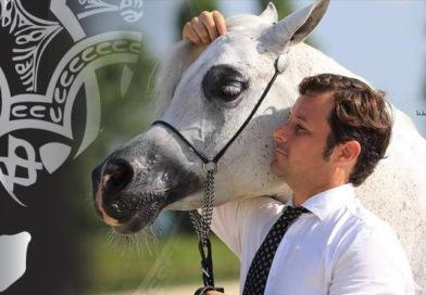 Cliníc de presentación de caballos árabes impartido por Giacomo Cappaci