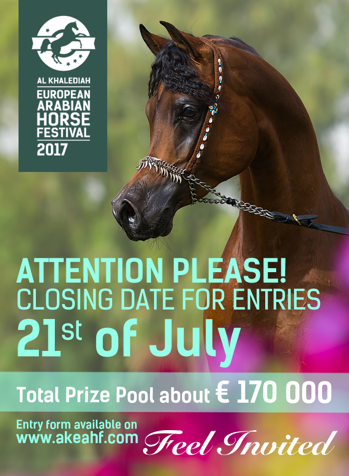 Al Khalediah European Arabian Horse Festival en Polonia