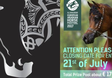 Hoy finaliza el plazo de inscripción para el Al Khalediah European Arabian Horse Festival en Polonia