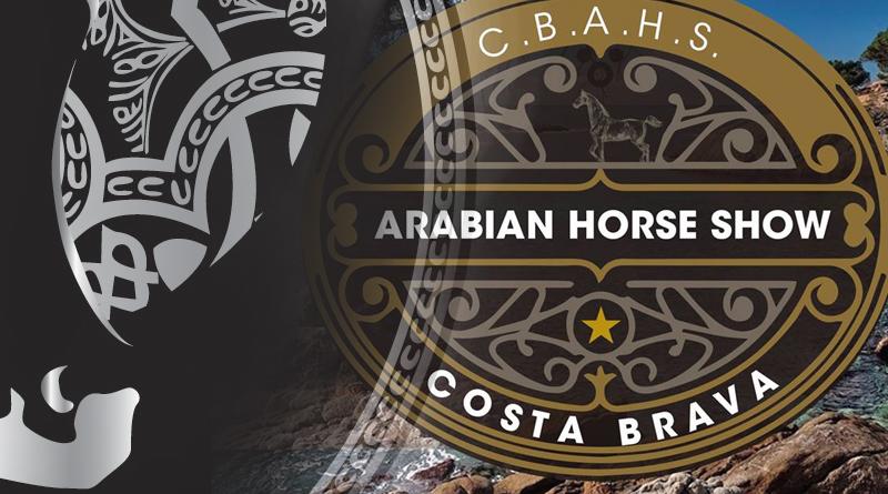 costa braba arabian horse show
