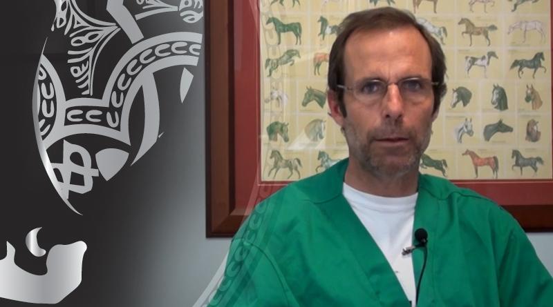 veterinario equino habla de la desparasitación en caballos