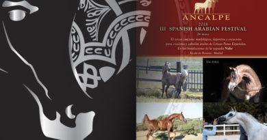 pure spanish festival _ arabigan